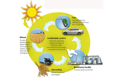 Biofuel description