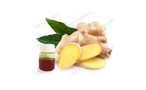 How does ginger oil work?