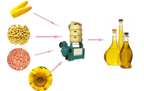 Vegetable oil making process plant