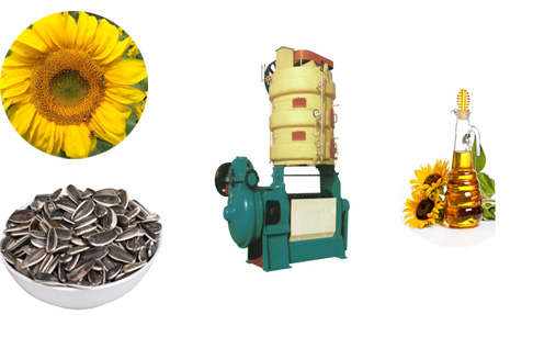 Sunflower oil pressmachinery