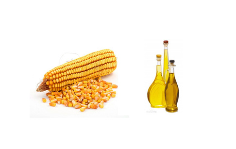 Corn germ oil considerations?