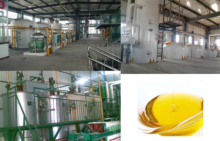 Peanut oil refined production equipment