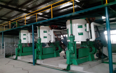 Oil seeds flaking machine