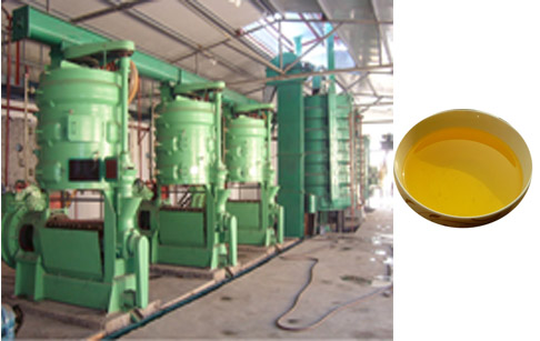How to start a mustard oil mill ?