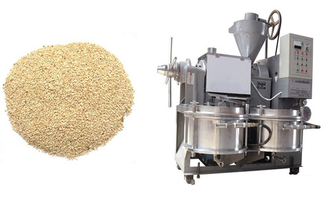 How to make sesame seed oil?