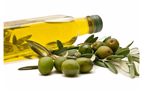 Seed oil and olive oil, comparision