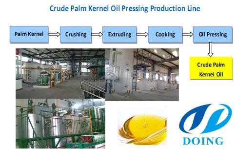 What's the process of palm oil refining and palm kernel oil refining?