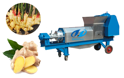Ginger dewatering machine press