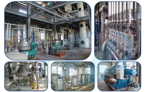 How to start a cooking oil production company?