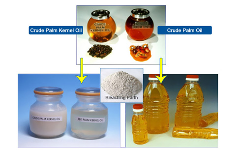 Palm oil bleaching process