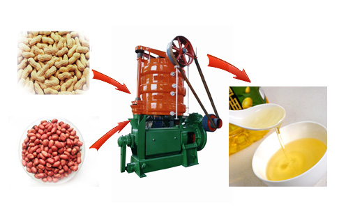 Key features and refined groundnut oil press machine