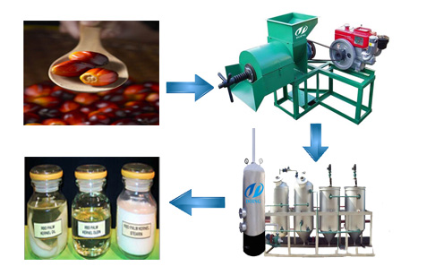 1TPH Palm oil press plant