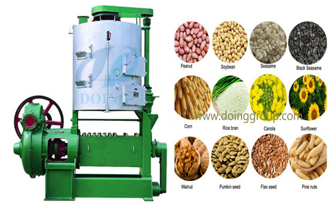 Rapeseed oil press machine