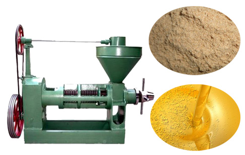 Rice bran oil press machine