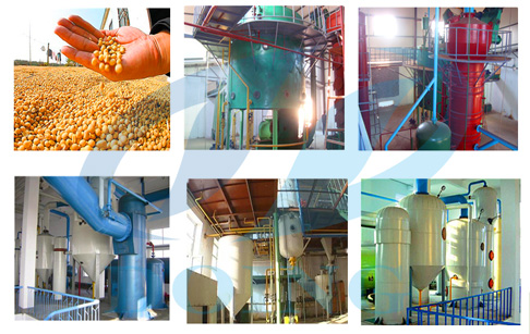soybena oil extraction equipment