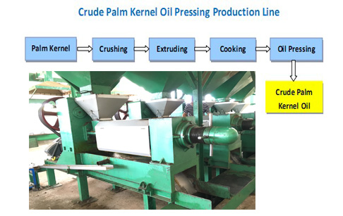 palm kernel oil pressing chart flow