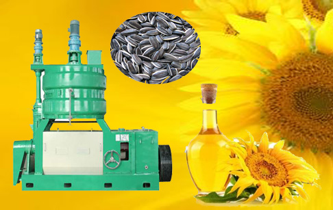 What is the cost of sunflower oil extraction machine?