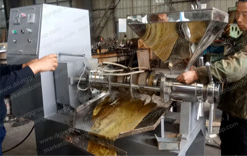 the running rapeseed oil press machine