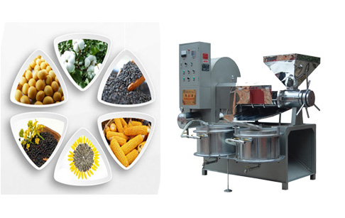 cooking oil extraction machine for home use