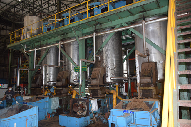 palm oil digester machine