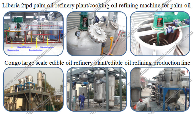 cooking oil refining project