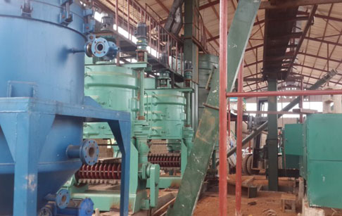 60TPD palm kernel oil production machine was set up in Nigeria