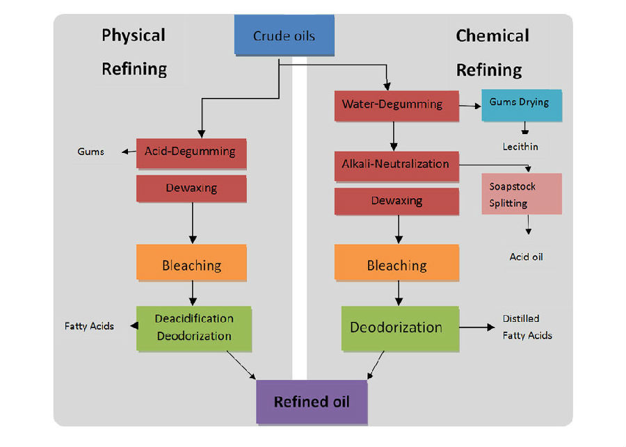 Manufacturer Palm Kernel Oil Extraction Plant
