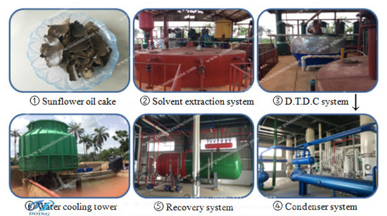sunflower oil solvent extraction line