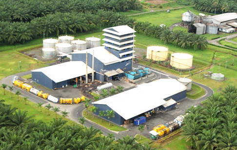 How to start a palm oil production business in Nigeria?