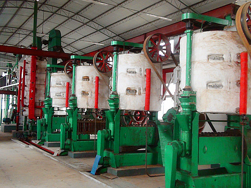 pressing machines of oil seeds