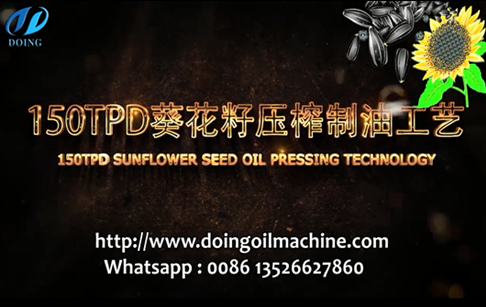 150tpd sunflower seed oil extraction process video