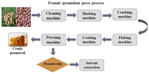 groundnut oil pressing process