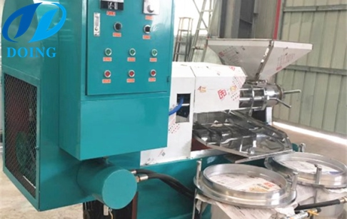 Two sets of peanut oil making machines has arrived in Bangladesh