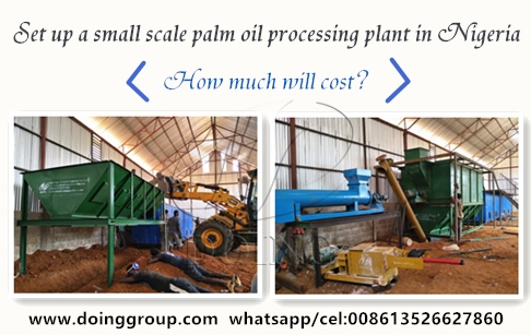 What is the cost of setting up a small scale palm oil processing plant in Nigeria?