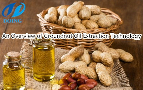 An overview of groundnut oil extraction technology