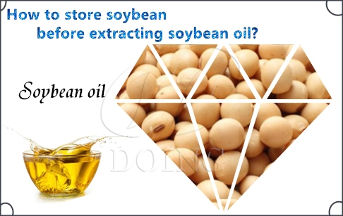 How to store soybean before extracting soybean oil?