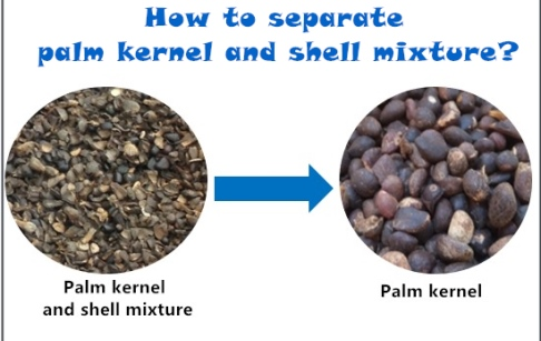 How to separate palm kernel and shell mixture?