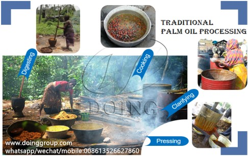 African traditional palm oil processing VS advanced palm oil processing technolo...