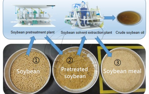 What kind of soybean oil extraction method is best for making animal feed?