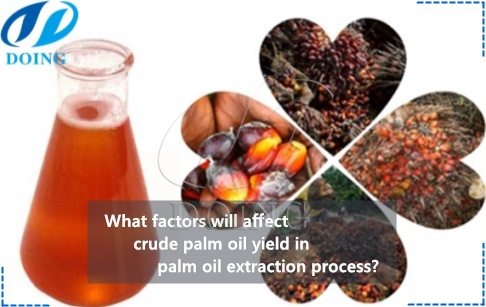 What factors will affect crude palm oil yield in palm oil extraction process?