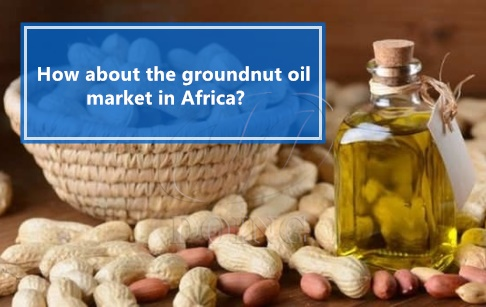 How about the groundnut oil market in Africa? Is it profitable?