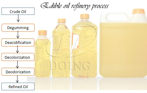 What are the critical process stages in edible oil refinery?