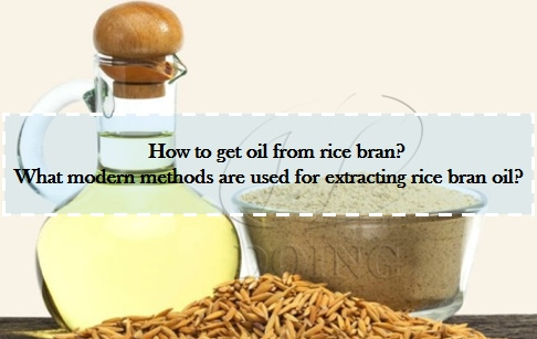 How to get oil from rice bran? What modern methods are used for extracting rice ...