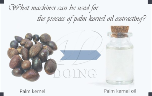 What machines can be used for the process of palm kernel oil extracting?