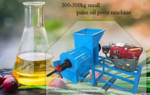 Single screw mini palm oil press machine running testing before delivery