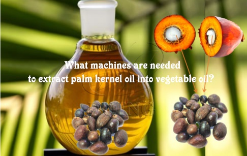 What machines are needed to extract palm kernel oil into vegetable oil?