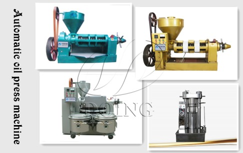 How much is the price of automatic oil press machine?