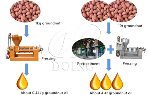 How much oil can be extracted from 1kg groundnuts?