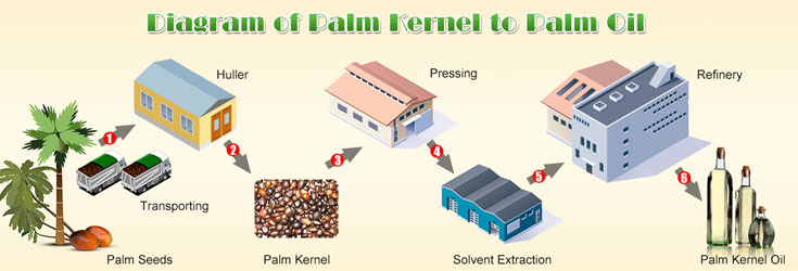 Palm Oil Mill Process Machinery